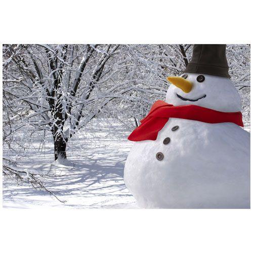 Set bonhomme de neige - multicolore