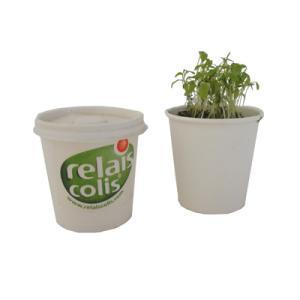 Kit plantation Pot carton grand modèle