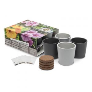 Set de collection 4 pots ceramiques standard