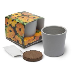 Cube de plantation ceramique standard